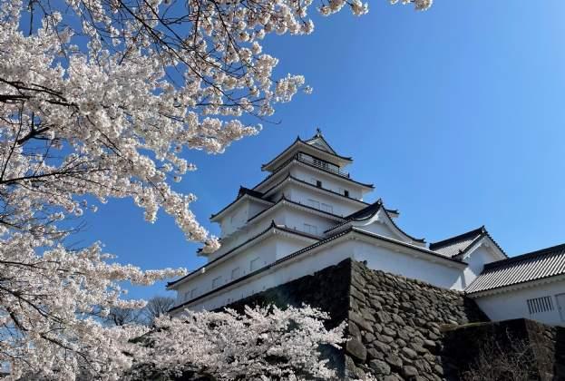 Japan Hospitality - August 2021
